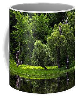 Maine Reflections Coffee Mug