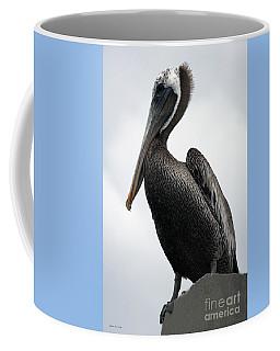 Majestic Pelican Photography A10317l Coffee Mug