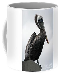 Majestic Pelican Photography A10317r Coffee Mug