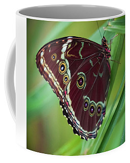 Coffee Mug featuring the photograph Majesty Of Nature by Karen Wiles