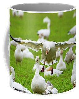 Make Room Coffee Mug