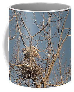 Coffee Mug featuring the photograph Making Babies by David Bearden