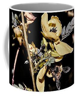Making Honey Coffee Mug
