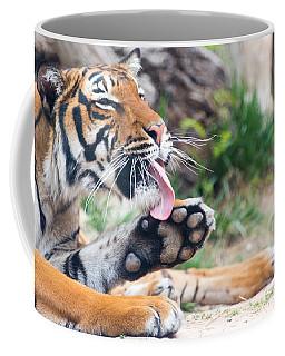 Malayan Tiger Grooming Coffee Mug