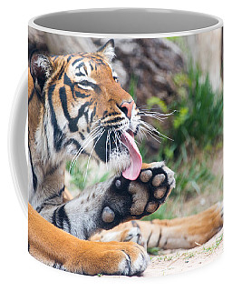 Malayan Tiger Grooming Coffee Mug