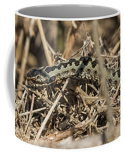 Male Adder Coffee Mug
