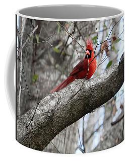 Male Cardinal In The Wind Coffee Mug by Belinda Lee