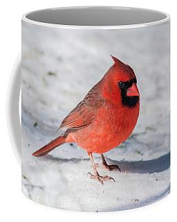 Male Cardinal In Winter Coffee Mug by Kenneth Cole