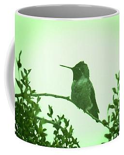 Male Costa's Hummingbird With Green Coffee Mug