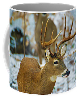 Male Deer In Snow Coffee Mug