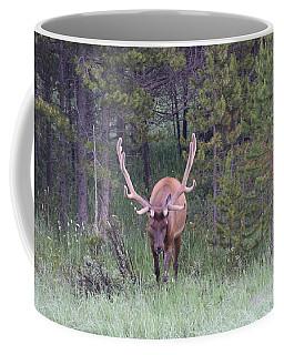 Coffee Mug featuring the photograph Bull Elk Rmnp Co by Margarethe Binkley