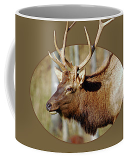 Male Elk Coffee Mug