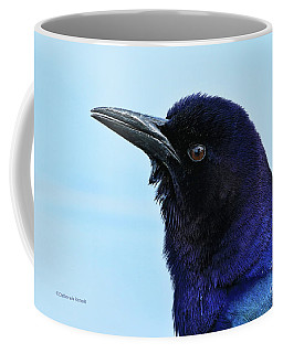 Coffee Mug featuring the photograph Male Grackle Beauty by Deborah Benoit