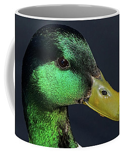 Male Mallard Duck Anas Platyrhynchos Portrait  Coffee Mug