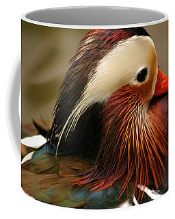 Male Mandarin Duck China Coffee Mug by Ralph A  Ledergerber-Photography