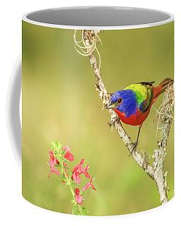 Male Painted Bunting #1 Coffee Mug