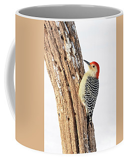 Male Red-bellied Woodpecker Coffee Mug
