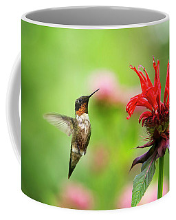Male Ruby-throated Hummingbird Hovering Near Flowers Coffee Mug