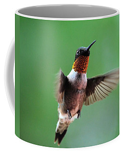 Male Ruby-throated Hummingbird Coffee Mug