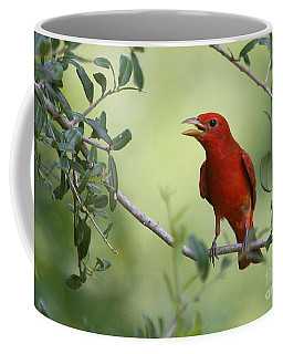 Male Summer Tanager Coffee Mug