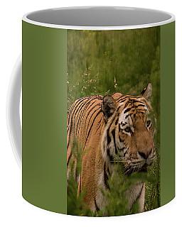 Male Tiger Coffee Mug