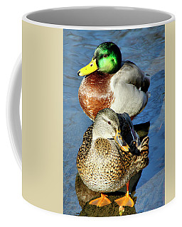 Mallard Couple Coffee Mug