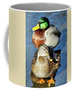 Mallard Couple Coffee Mug