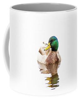 Mallard Drake II Coffee Mug