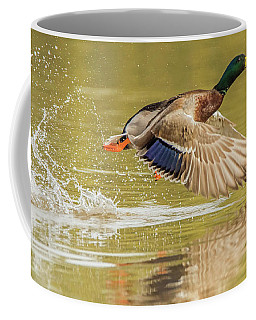 Mallard Duck 1952-112017-2cr Coffee Mug