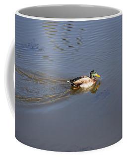 Mallard Duck Burgess Res Co Coffee Mug