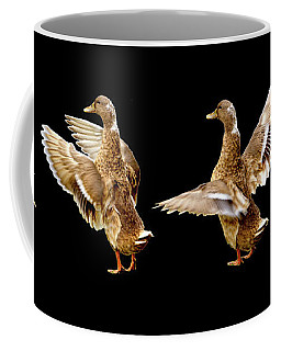 Mallard Duck Stretching Her Wings Coffee Mug