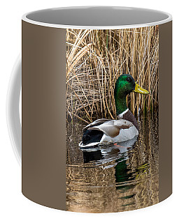 Mallard II Coffee Mug