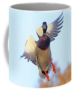 Mallard In Flight 2 Coffee Mug
