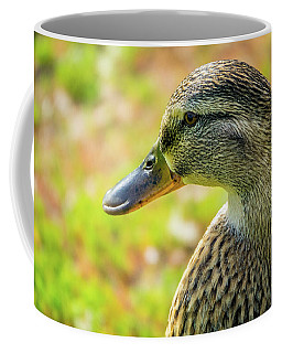 Mallard Portrait - Female Coffee Mug