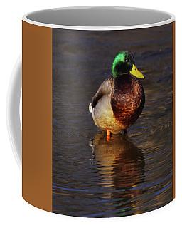 Mallard Squat Coffee Mug
