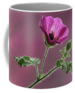 Mallow Flower 3 Coffee Mug