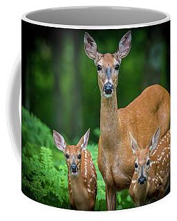 Mama And Fawns Coffee Mug