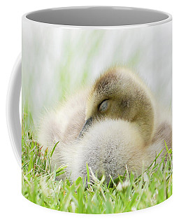 Mama's Baby Coffee Mug