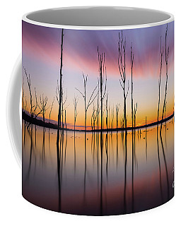 Manasquan Reservoir Long Exposure Coffee Mug