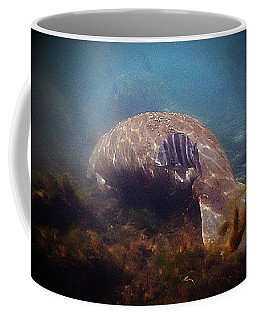 Manatee And Drum Coffee Mug