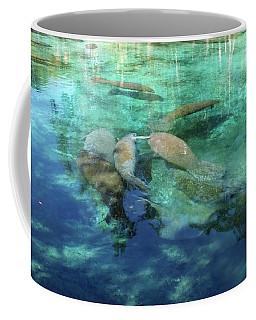 Manatee Gathering Coffee Mug