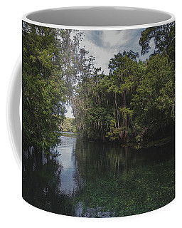 Manatee Springs Coffee Mug