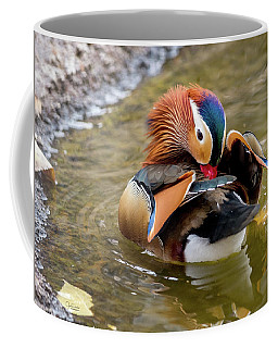 Mandarin Duck Preening Feathers Coffee Mug