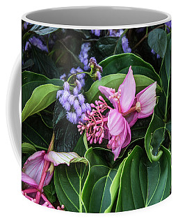 Mandinilla Magnifica Coffee Mug