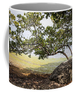 Mangrove Forest Coffee Mug