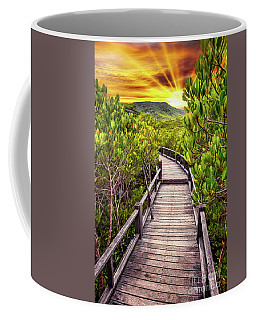 Mangrove Forest Sunset Coffee Mug
