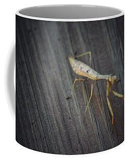Mantis  Coffee Mug