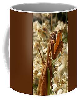 Mantis Pose Coffee Mug