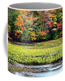Many Colors Of Autumn Coffee Mug by Mikki Cucuzzo