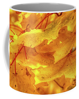 Coffee Mug featuring the photograph Maple Blaze by Marie Leslie